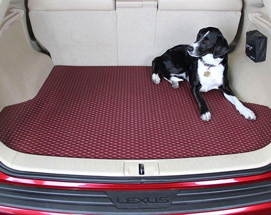 cargo-slider-rubbertite-dog